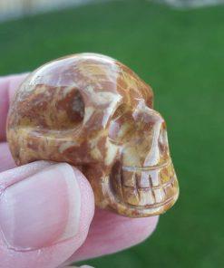 Leopard Skin Jasper Skull