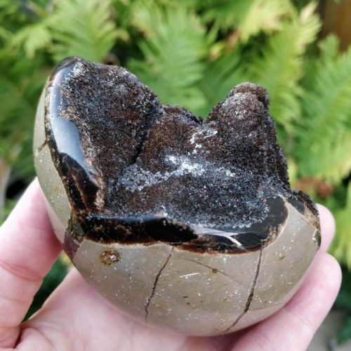 Gorgeous Septarian Stone