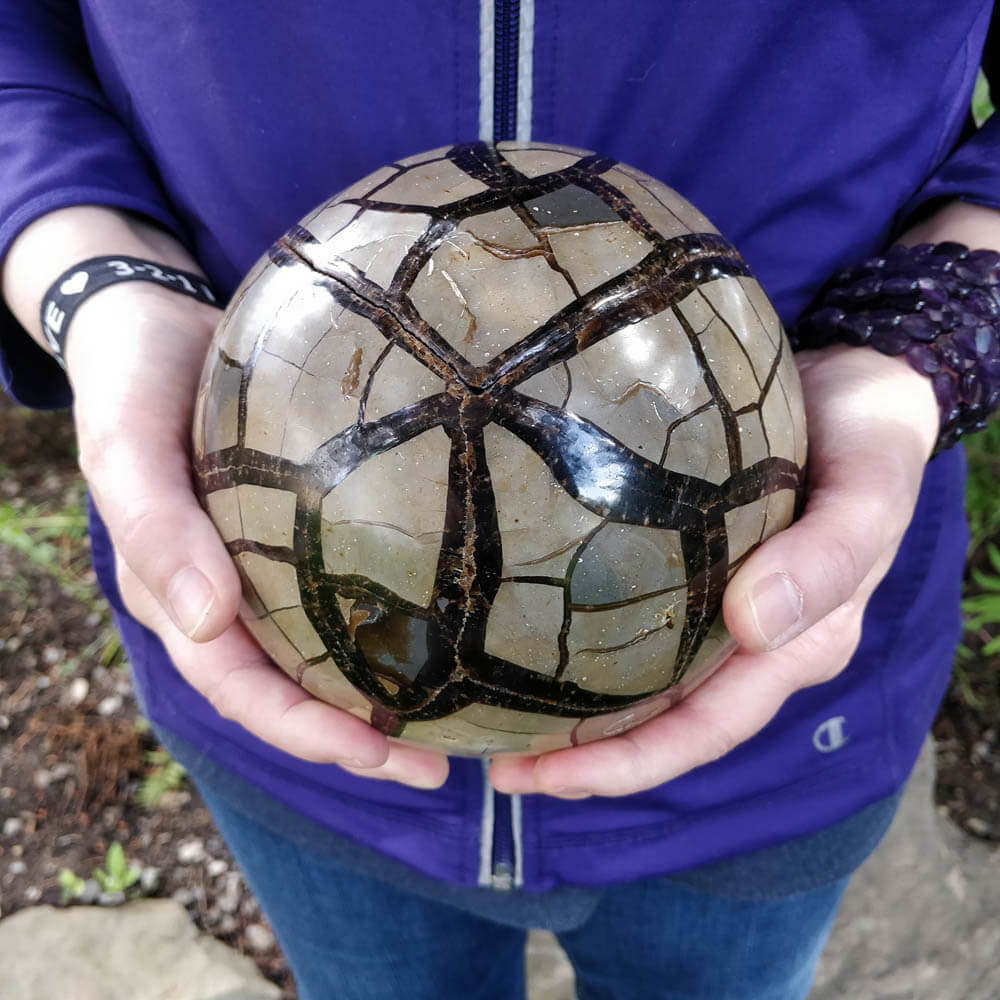 Septarian Sphere with Lid
